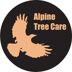 Alpine Tree Care - Lexington SC
