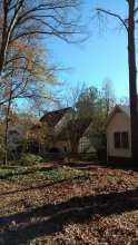 we used pulleys, ropes, and saws to remove A hickory tree was leaning dangerously over a house in Lexington