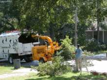wood chipping trimmed tree limbs in soda city - capital of South Carolina at Olympia-Granby Mill Village Museum