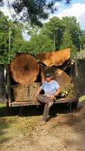 Portrait of the Owner in Front of Tree Stumps