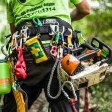 arborist equipment - Puma™ Harness by Buckingham