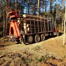 pine tree logs being hauled off