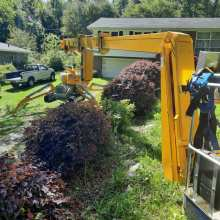 Tree care service with our new omme lift 2750 spider lift 004