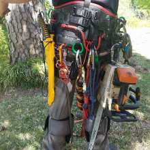 tree care service gear