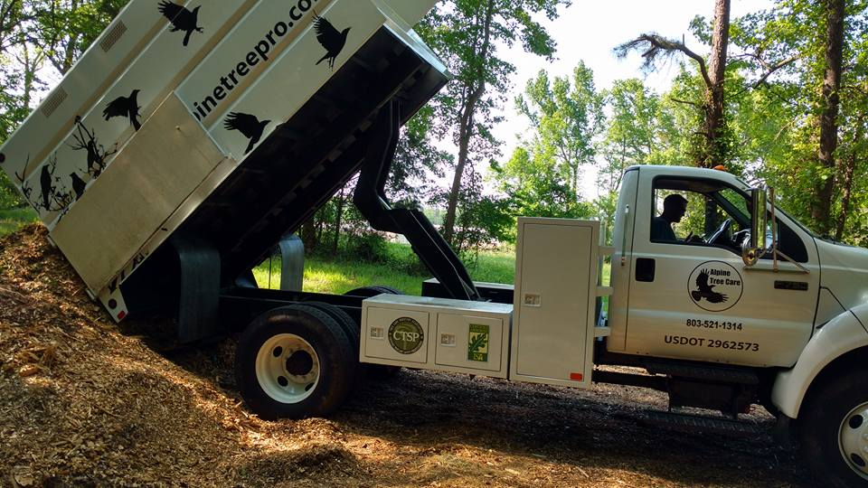 usdot 2962573 alpine tree care truck wood chips pile