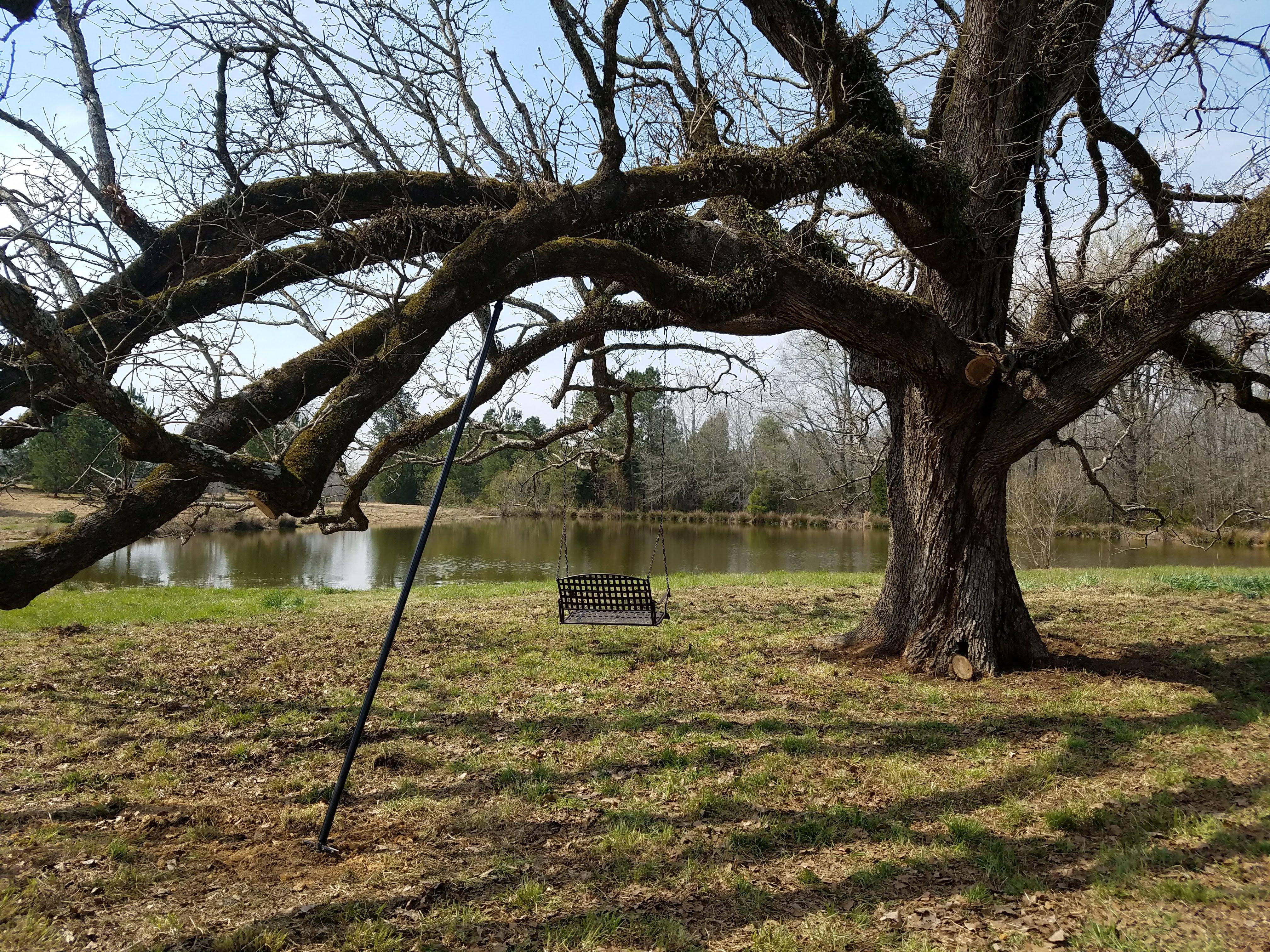 Swing Installation on Post Oak in Saluda